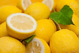 Lemons and yellow