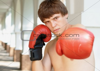 Close-up photo of a young boxer