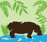 grunge hippo