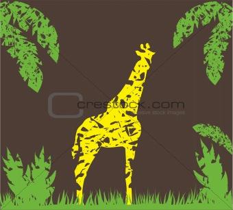 grunge giraffe