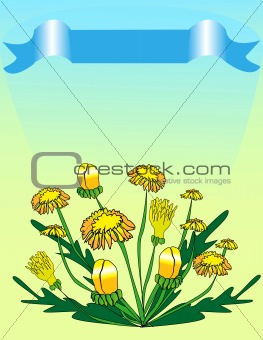 a bouquet of dandelions