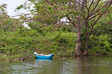Traditional boats in tropical forest,