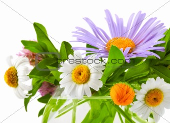 bunch flower in vase