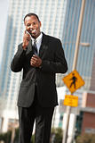 Smiling Businessman On Phone Call