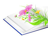open book with flowers and green grass