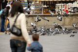 Feeding pigeons in Padua