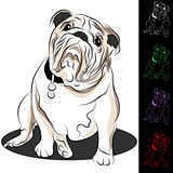 Bulldog Drawing Set