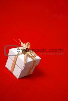 Gift box presentt tied with raffia