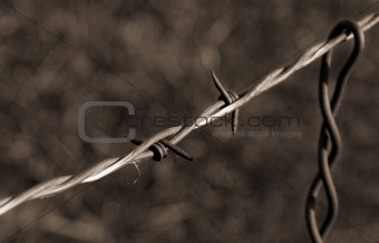 Old Time Barbed Wire