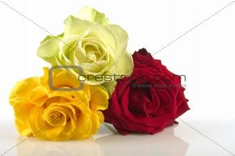 bouquet roses