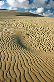 Desert, dune, sand graphic.