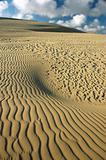 Desert, dune, sand graphic.
