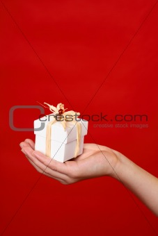Gift in palm of hand - vertical