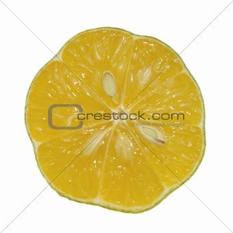 Slice of Local Lemon
