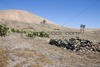 Arid landscape in Lanzarote