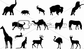 wild animals silhouettes