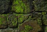 Old wall - 1