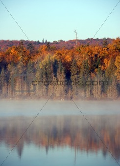 An autumn's landscape with fog