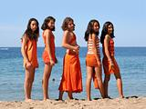 Five girls on the beach