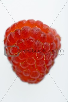 One red raspberry.