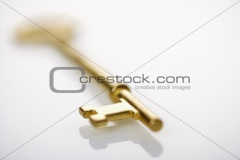 Skeleton key.