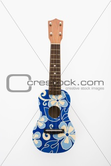 Ukulele with blue flowers.