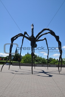 Giant Spider in Ottawa