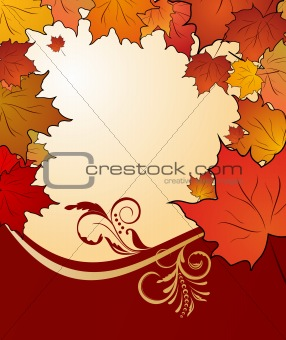autumn floral background with maples