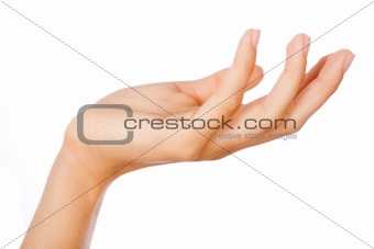 Gesture of womans open hand