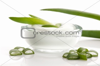aloe vera - leaves and face cream