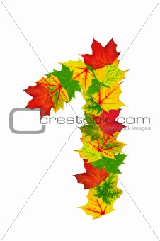 Autumn maple Leaves in the shape of number One