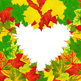 heart shape autumn leaves frame