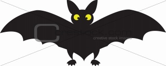 black big  bat
