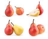 Set of fresh pears isolated on white