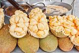 Jackfruit genus Artocarpus