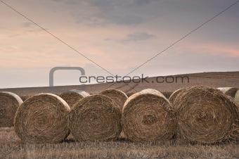 Beautiful golden hour hay bales sunset landscape
