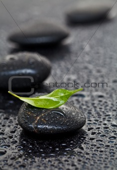Massage stones with leaf