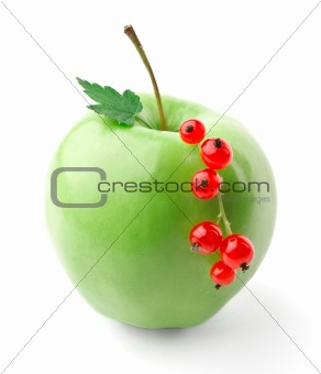 Green apple and red currant branch