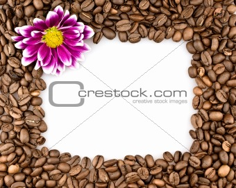 Frame made of coffee and chrysanthemums