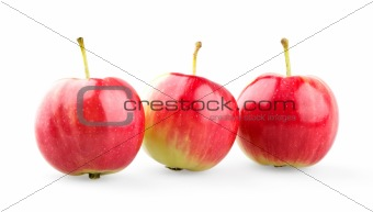 Three mini apples in row
