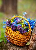 basket with a spring bouquet costs on a tree