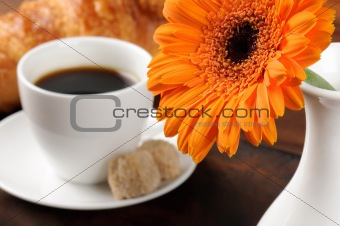 Freshly cut flower and coffee