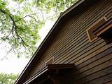 wooden hut in forest