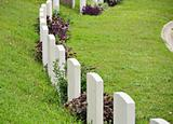Rows of headstone at military memorial