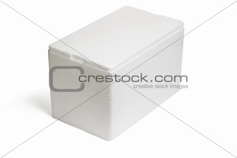 Styrofoam storage box