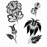 floral graphic design elements vector