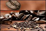 Banners - Coffee