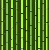 Bamboo seamless green natural retro pattern or texture