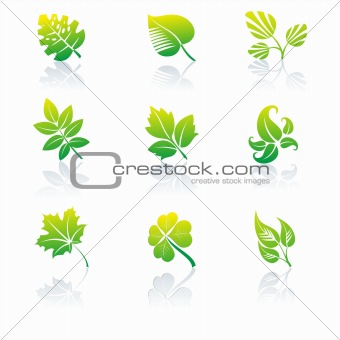 Green icons and graphics