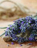 Lavender bouquet with seeds.